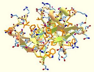 белок Nrf2