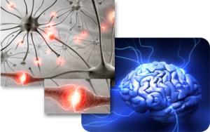 Научно доказано, что сознание может влиять на реальность
