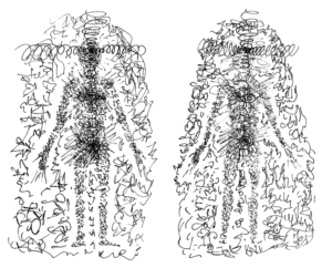 Anatomía Integral