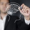 Характер зависит от формы мозга