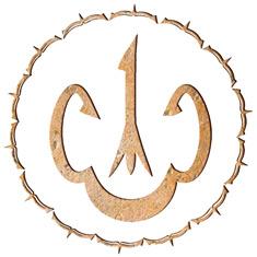 Тринадцатый интегральный эфирный символ