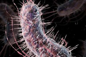 ученые создают синтетическую ДНК