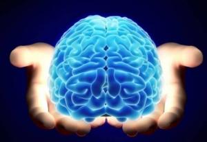 Сокращение калорий в суточном рационе может омолаживать мозг