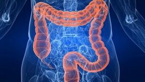 Ученые выявили новую удивительную связь частей тела человека