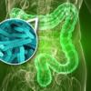 Микрофлора кишечника не определяется геномом человека, но очень влияет на качество и продолжительность жизни