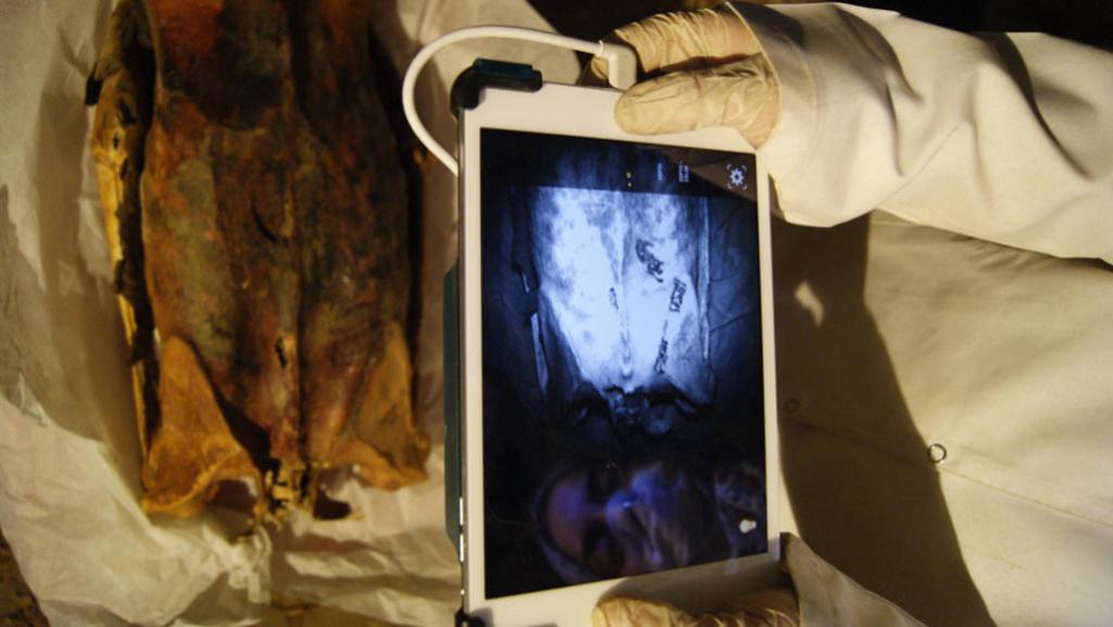 На мумиях древних египтян обнаружили скрытые татуировки