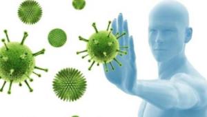 Биолог объяснила, у кого формируется иммунитет к COVID-19